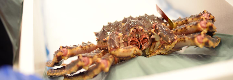 Troika Seafood